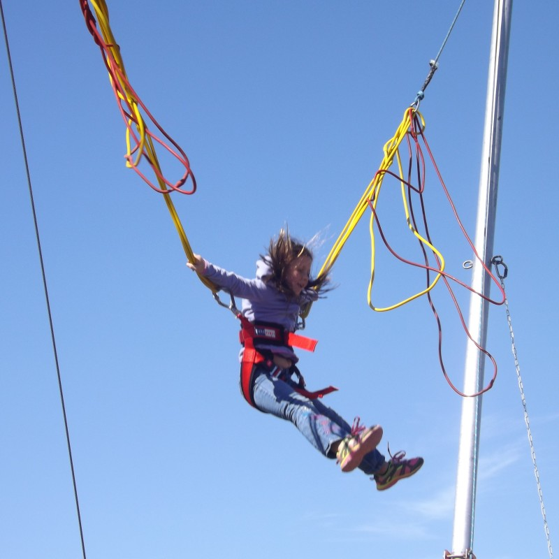picnic master  u0026gt  bungee trampoline jump  2 person